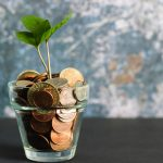 Money Plants in Bedrooms: Pros and Cons