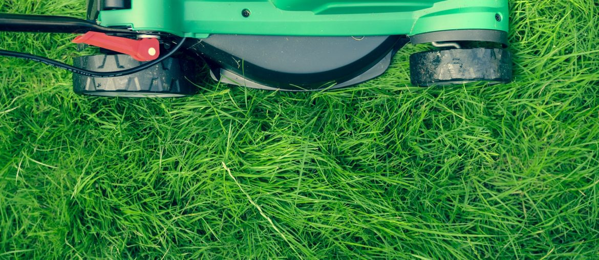Should I buy an electric lawn mower?, Zazzy Home