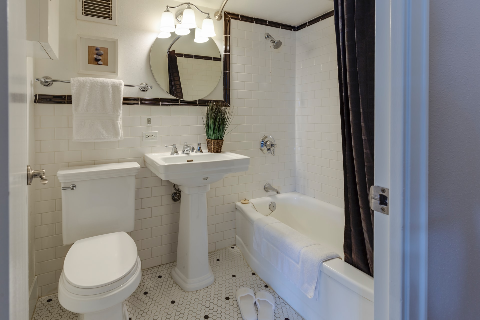 Things to consider when buying a new toilet seat, Zazzy Home
