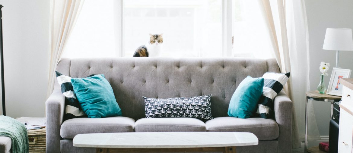 What kind of sofa should I buy for my living room?, Zazzy Home