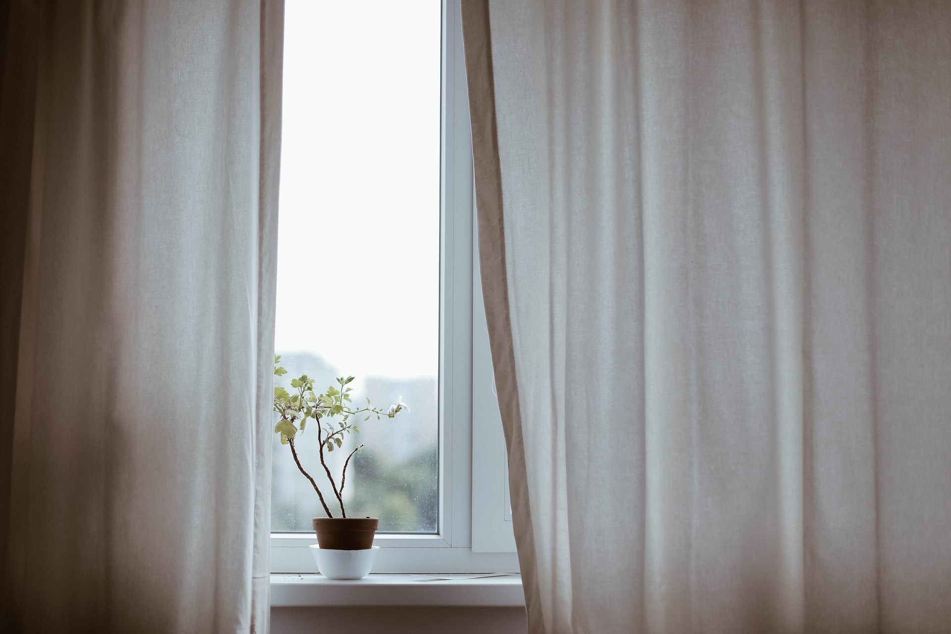 What to consider when buying curtains for your living room, Zazzy Home