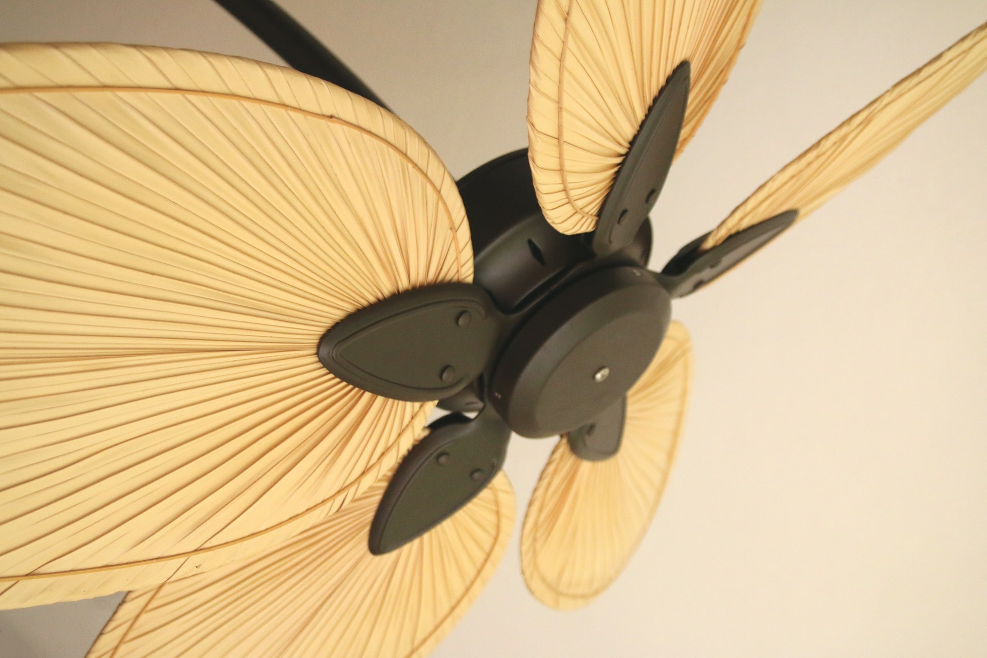 The ultimate guide to ceiling fans. Everything you ever wanted to know (and stuff you didn't), Zazzy Home